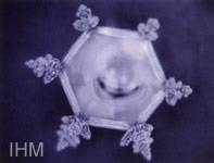 写真2、シューマンの「子供の情景」トロイメライを聴かせた結晶