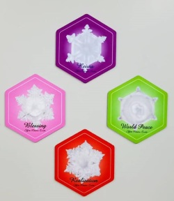 『水からの伝言 ザ・ファイナル』結晶マグネットプレゼント