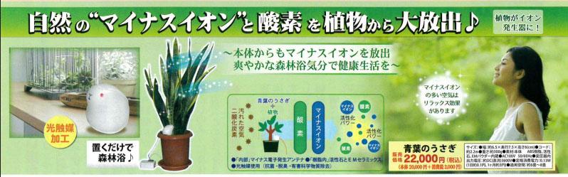 マイカの岩盤浴(M-1000)&青葉うさぎセット【10周年発売記念特別キャンペーン】