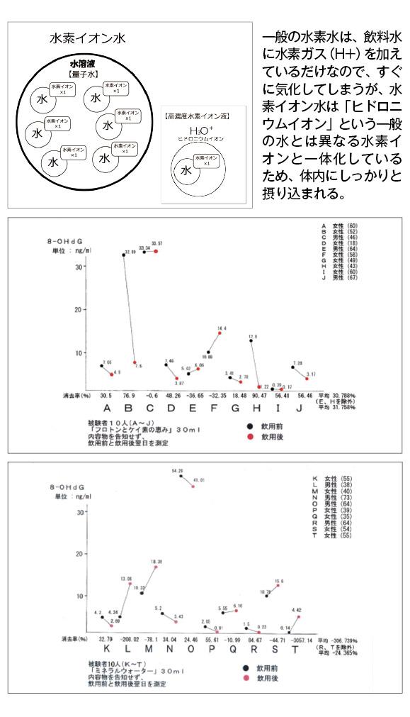 プロトングラフ